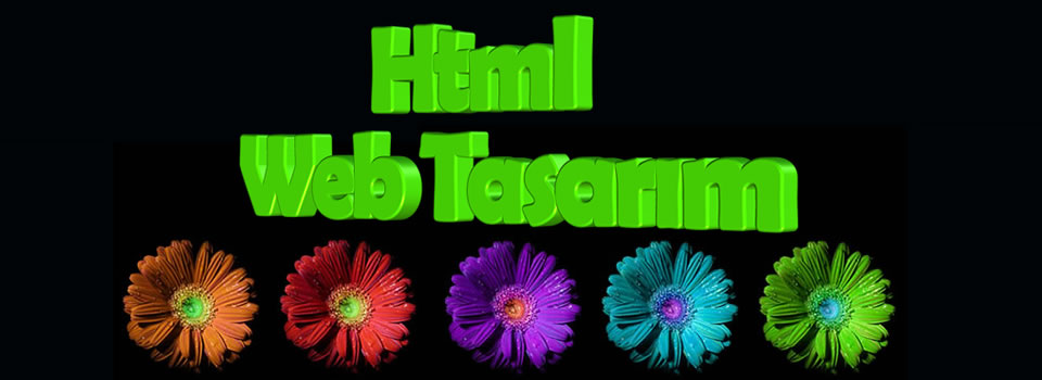 html web tasar?m
