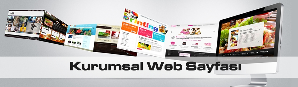 kurumsal-web-sayfasi2