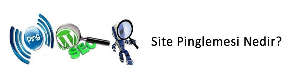site-pinglemesi-nedir