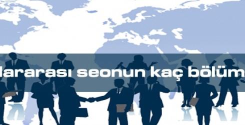 Uluslararası Seo Bölümleri