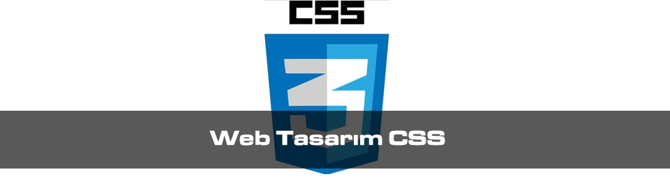 web-tasarim-css
