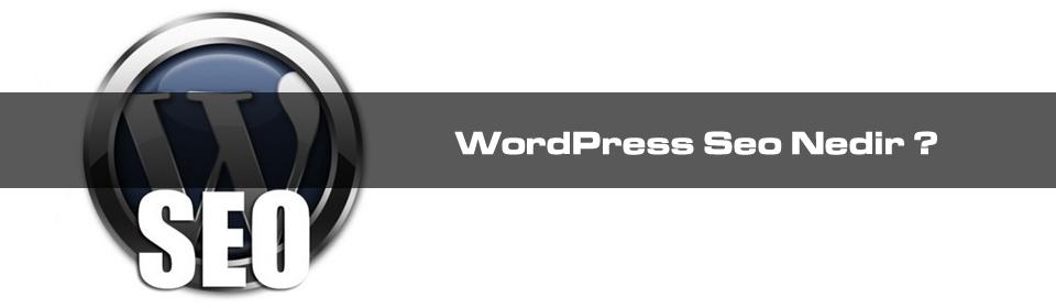 wordpress-seo-nedir