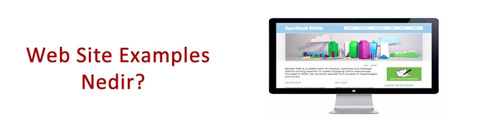web-site-examples-nedir