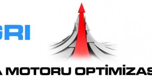 Ağrı Arama Motoru Optimizasyonu