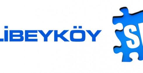 Alibeyköy Seo