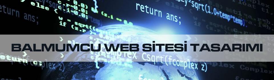 balmumcu-web-sitesi-tasarimi