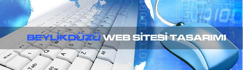 beylikduzu-web-sitesi-tasarimi