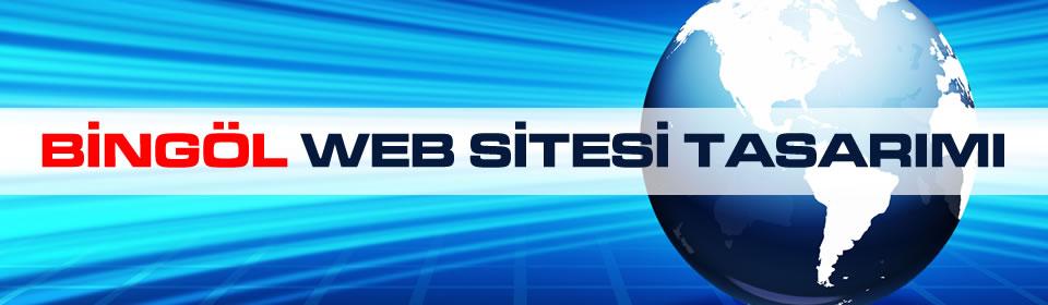 bingol-web-sitesi-tasarimi