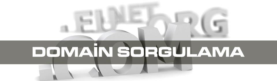 domain-sorgulama