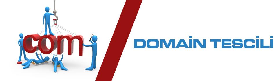 domain-tescili