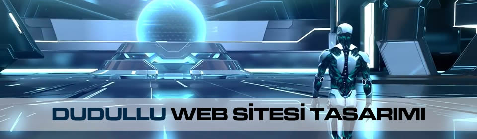 dudullu-web-sitesi-tasarimi
