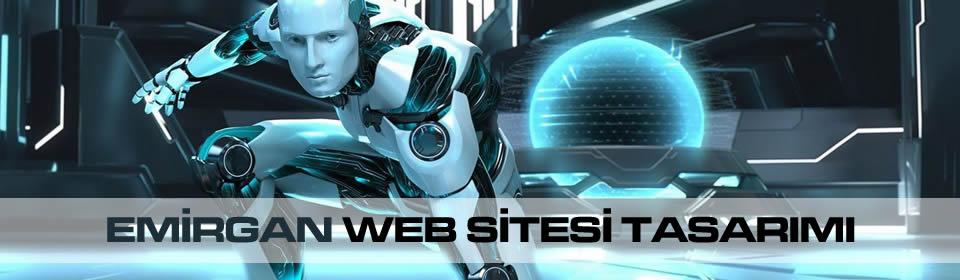 emirgan-web-sitesi-tasarimi