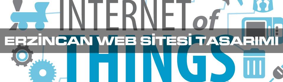 erzincan-web-sitesi-tasarimi