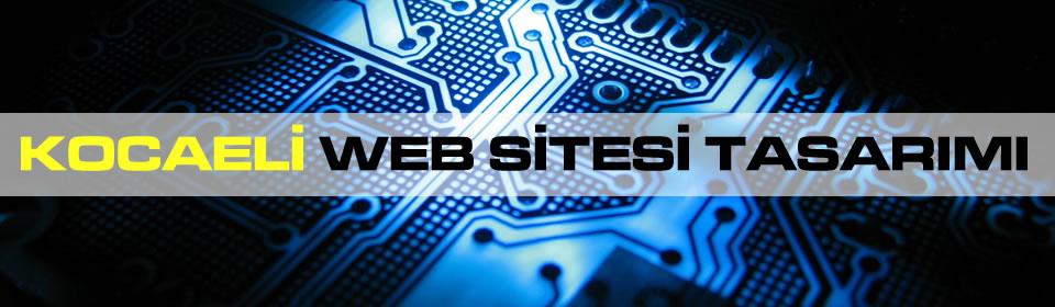 kocaeli-web-sitesi-tasarimi