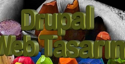 Drupal Web Tasarım Nedir ?