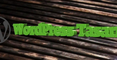 WordPress Tasarım