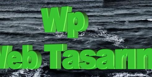 Wp Web Tasarım