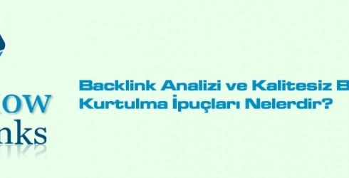 Backlink Analizi ve Kalitesiz Backlinklerden Kurtulma