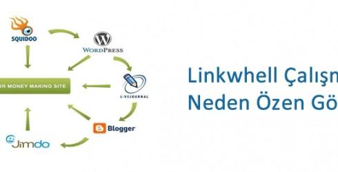 Link Whell Çalışmasına Neden Özen Gösteriliyor ?