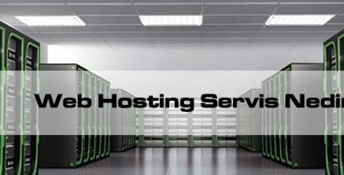 Web Hosting Servisi nedir?