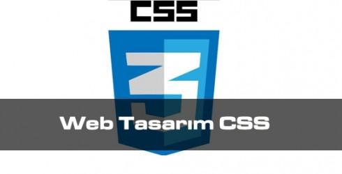 Web Tasarım CSS
