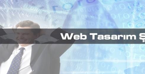 Web Tasarım Şirketleri Nedir