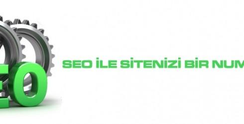 Seo ile Sitenizi Bir Numara Yapın