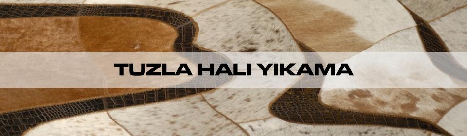https://www.icebluetasarim.com/wp-content/uploads/2014/11/tuzla-hali-yikama1.jpg