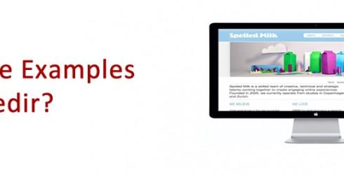 Web Site Examples Nedir ?