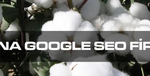 Adana Google Seo Firması