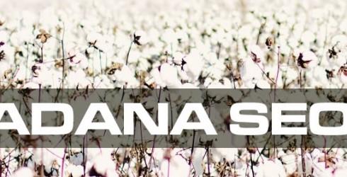 Adana Seo