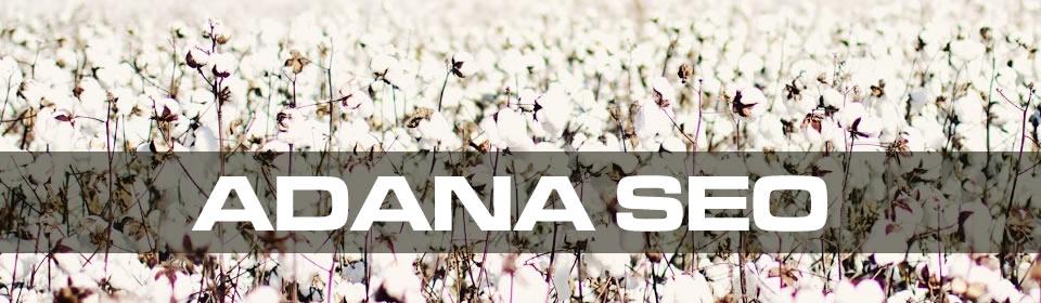 https://www.icebluetasarim.com/wp-content/uploads/2014/12/adana-seo.jpg