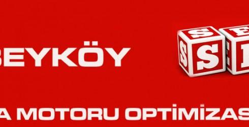 Alibeyköy Arama Motoru Optimizasyonu
