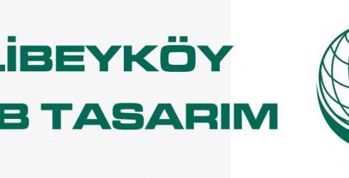 Alibeyköy Web Tasarım