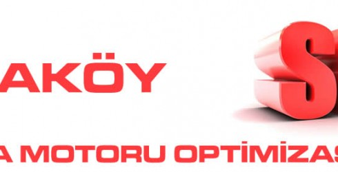 Ataköy Arama Motoru Optimizasyonu