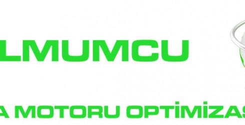 Balmumcu Arama Motoru Optimizasyonu