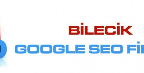 Bilecik Google Seo Firması