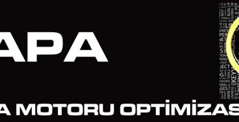 Çapa Arama Motoru Optimizasyonu
