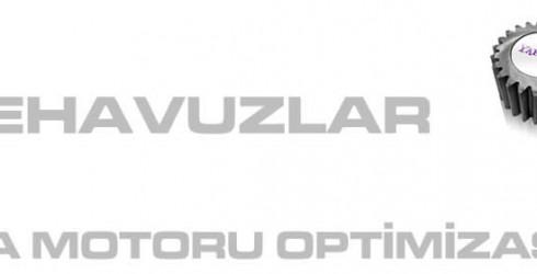 Çiftehavuzlar Arama Motoru Optimizasyonu