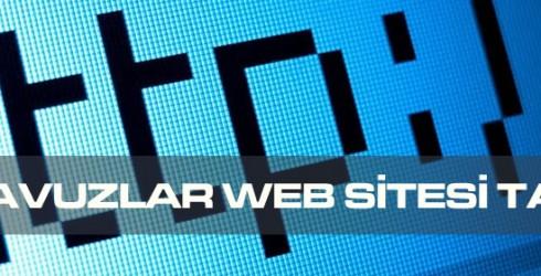 Çiftehavuzlar Web Sitesi Tasarımı