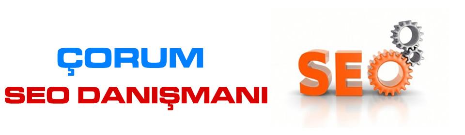 https://www.icebluetasarim.com/wp-content/uploads/2014/12/corum-seo-danismani.jpg