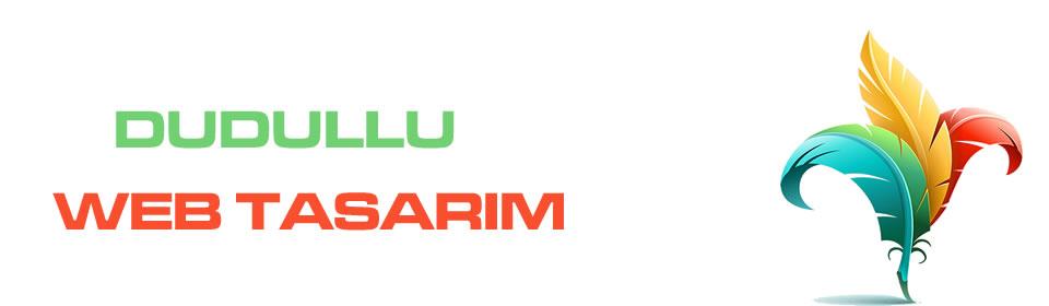 https://www.icebluetasarim.com/wp-content/uploads/2014/12/dudullu-web-tasarim.jpg