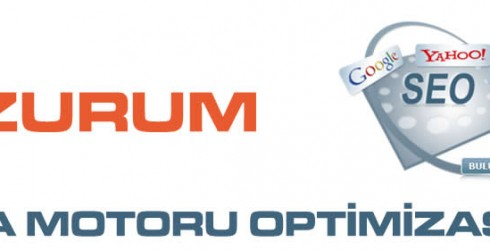 Erzurum Arama Motoru Optimizasyonu