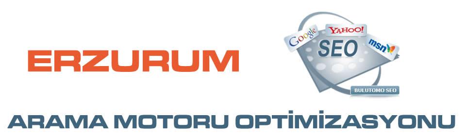 https://www.icebluetasarim.com/wp-content/uploads/2014/12/erzurum-arama-motoru-optimizasyonu.jpg