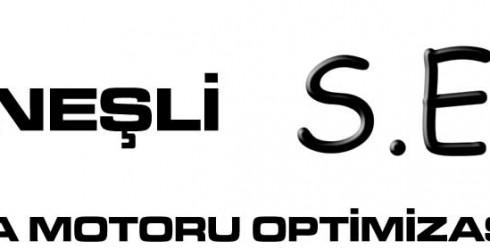 Güneşli Arama Motoru Optimizasyonu