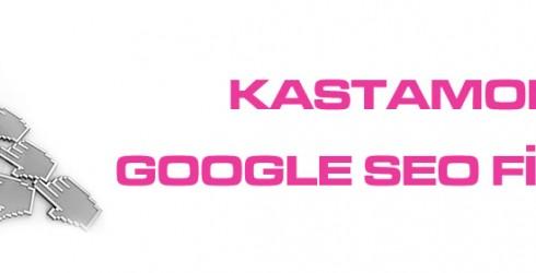 Kastamonu Google Seo Firması