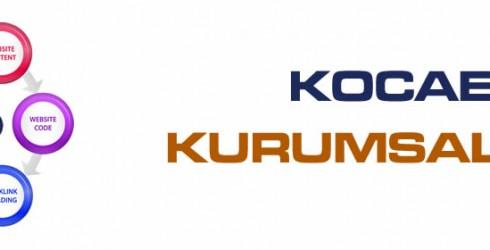 Kocaeli Kurumsal Seo