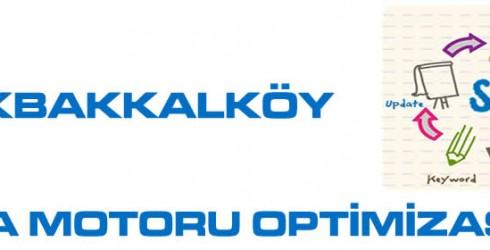 Küçükbakkalköy Arama Motoru Optimizasyonu
