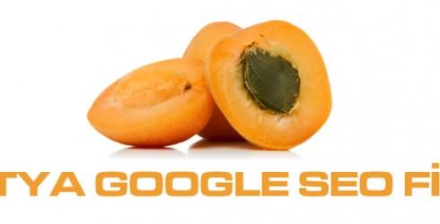 Malatya Google Seo Firması
