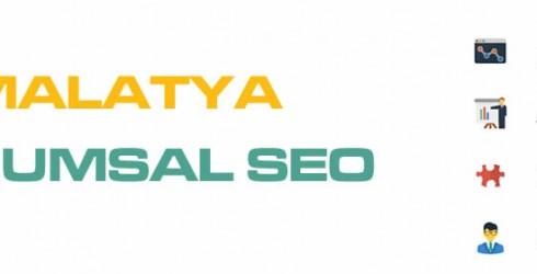 Malatya Kurumsal Seo